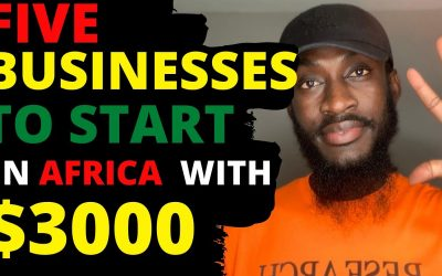 $3000 Businesses to start in Africa | business opportunities in Africa